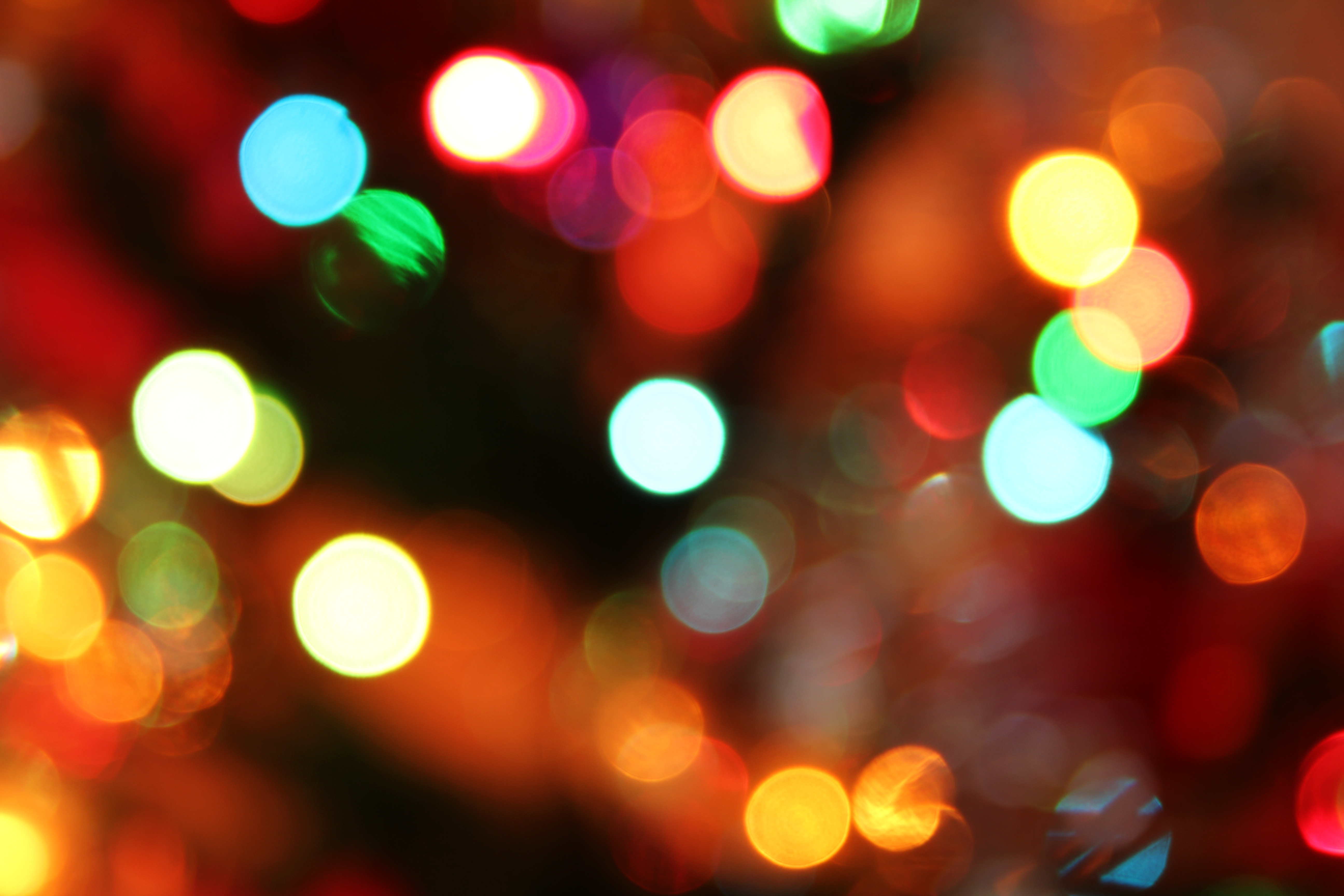 Christmas lights | Seeds of Faith