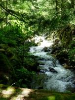 The Nun's creek
